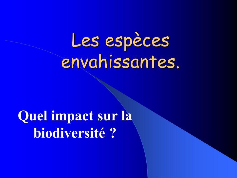 Les espèces envahissantes. Quel impact sur la biodiversité ?