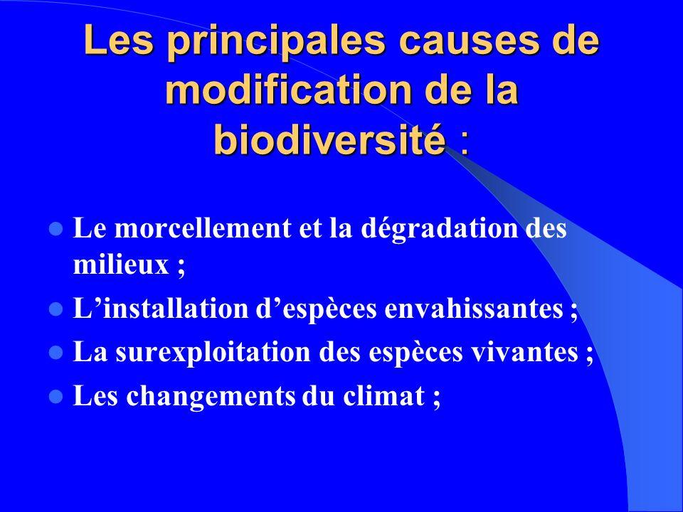 Les principales causes de modification de la biodiversité : Le morcellement et la dégradation des milieux ; Linstallation despèces envahissantes ; La
