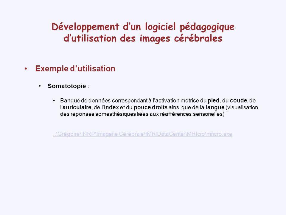 Développement dun logiciel pédagogique dutilisation des images cérébrales Langue CoudePiedAuriculaire PouceIndex