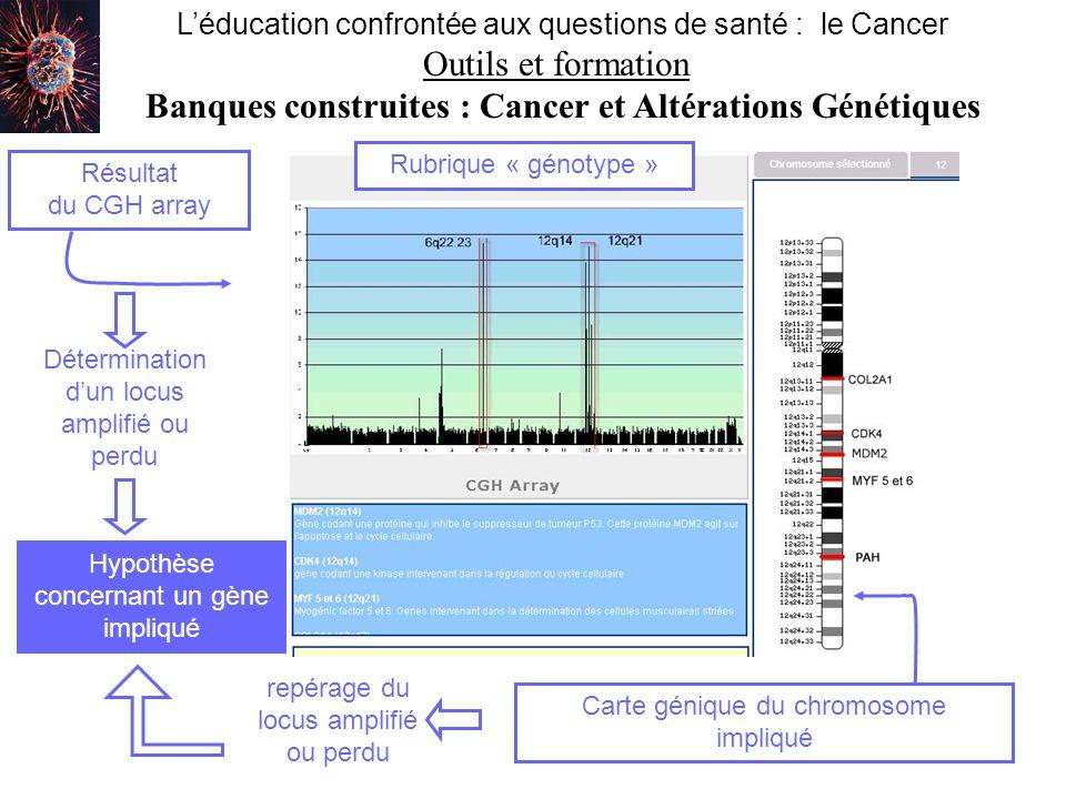 Léducation confrontée aux questions de santé : le Cancer Outils et formation Banques construites : Cancer et Altérations Génétiques Accès à une banque de chromosomes (localisation doncogènes, de gènes suppresseurs de tumeur, dautres gènes) Accès à un lexique (définitions des principaux termes utilisés dans la banque : pathologies, mécanismes… ) Accès à une banque de techniques (permettant lobtention des différentes images présentées : FISH, CGH, CGH array, peinture 24 couleurs) retour