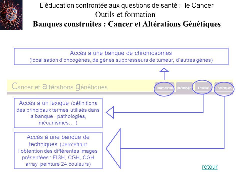 Léducation confrontée aux questions de santé : le Cancer Outils et formation Banques construites : Cytométrie et cancer Un outil… …qui permet dutiliser des données cytométriques… …en affichant un graphique où : - chaque point représente une cellule - sa position dépend de la densité de marqueurs à sa surface