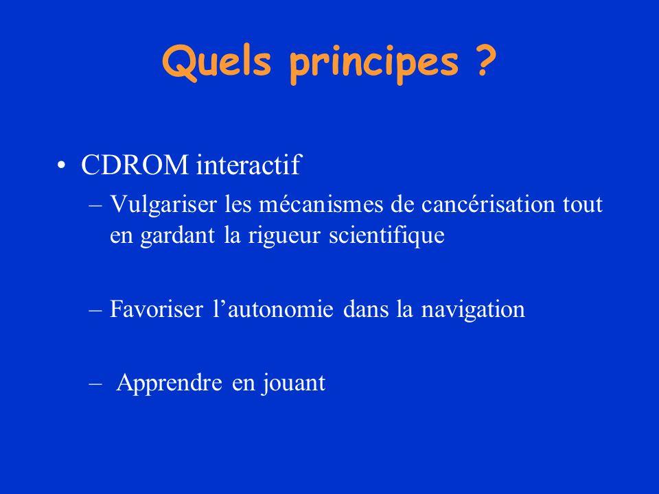 Quels principes ? CDROM interactif –Vulgariser les mécanismes de cancérisation tout en gardant la rigueur scientifique –Favoriser lautonomie dans la n