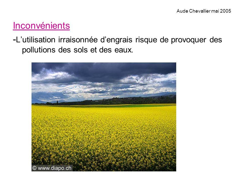 Inconvénients - Lutilisation irraisonnée dengrais risque de provoquer des pollutions des sols et des eaux. Aude Chevallier mai 2005