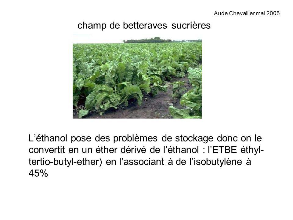 champ de betteraves sucrières Léthanol pose des problèmes de stockage donc on le convertit en un éther dérivé de léthanol : lETBE éthyl- tertio-butyl-
