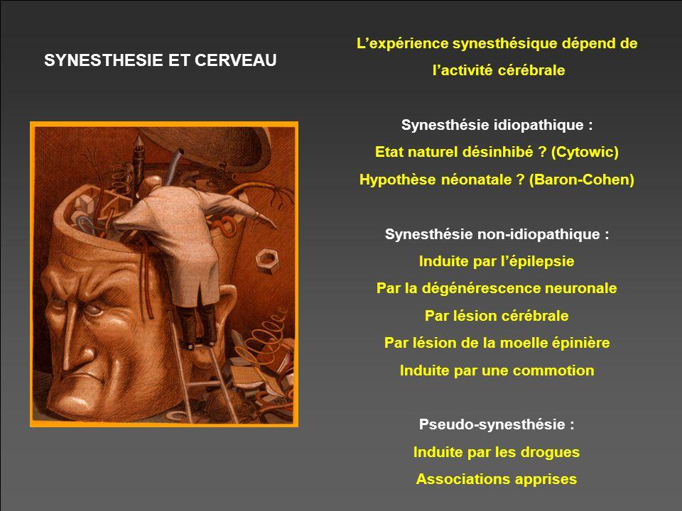 SYNESTHESIE ET CERVEAU Lexpérience synesthésique dépend de lactivité cérébrale Synesthésie idiopathique : Etat naturel désinhibé ? (Cytowic) Hypothèse