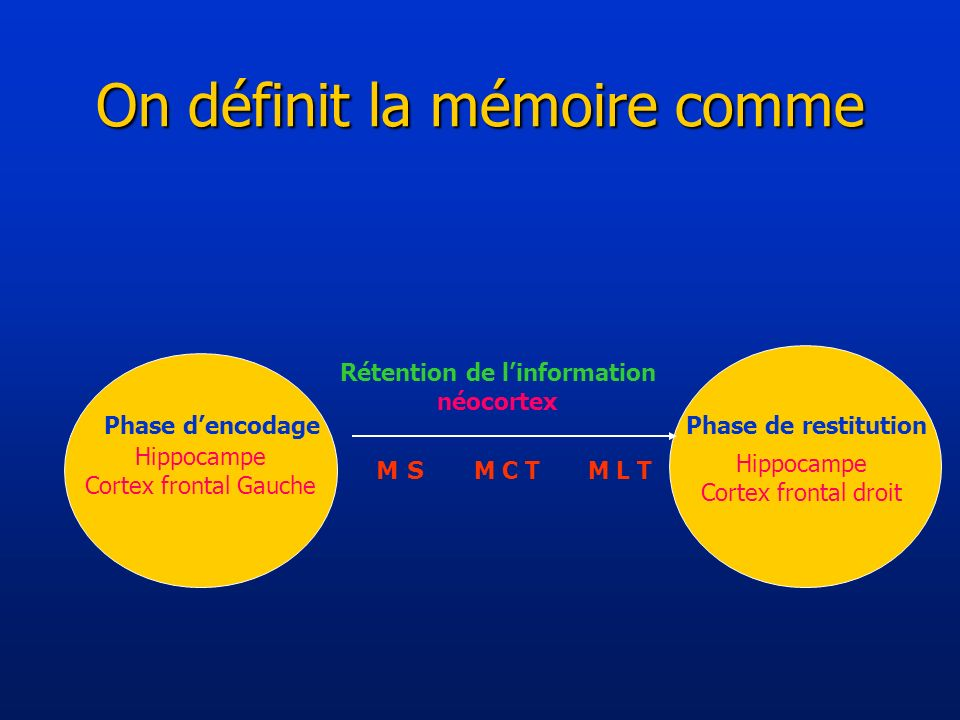 On définit la mémoire comme Hippocampe Cortex frontal Gauche Rétention de linformation néocortex M S M C TM L T Phase dencodagePhase de restitution Hi