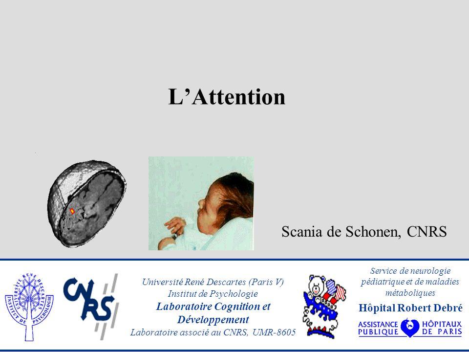 LAttention Scania de Schonen, CNRS Université René Descartes (Paris V) Institut de Psychologie Laboratoire Cognition et Développement Laboratoire associé au CNRS, UMR-8605 Service de neurologie pédiatrique et de maladies métaboliques Hôpital Robert Debré