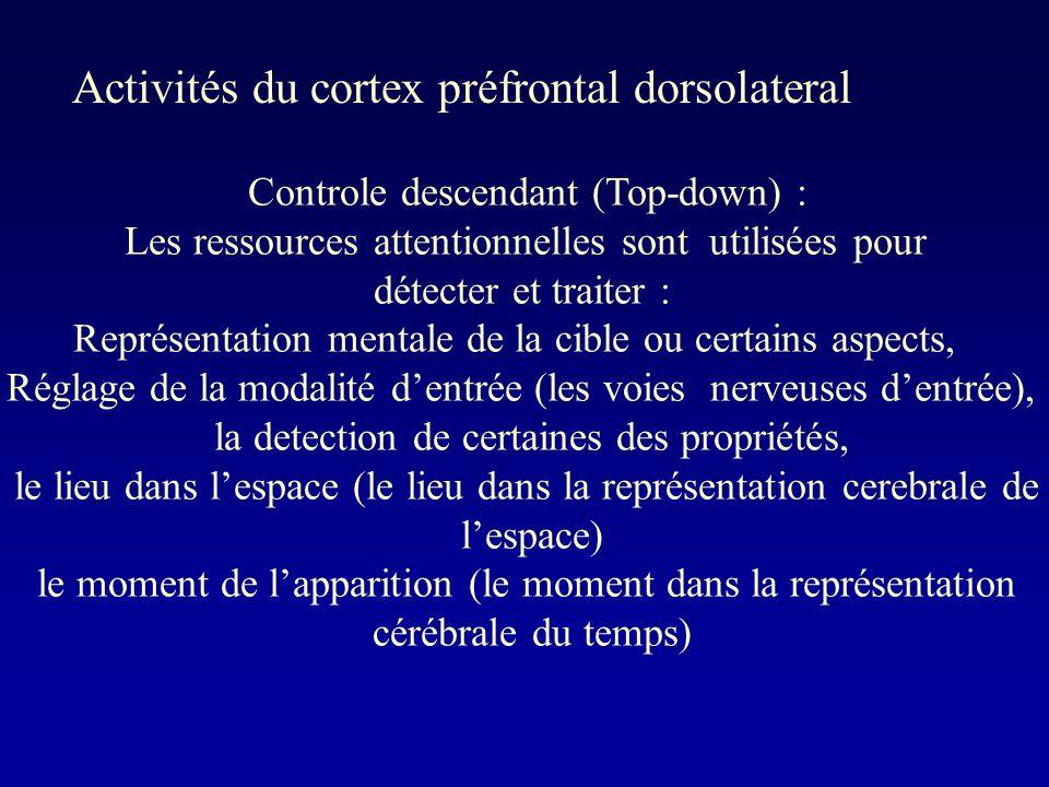 Controle descendant (Top-down) : Les ressources attentionnelles sont utilisées pour détecter et traiter : Représentation mentale de la cible ou certains aspects, Réglage de la modalité dentrée (les voies nerveuses dentrée), la detection de certaines des propriétés, le lieu dans lespace (le lieu dans la représentation cerebrale de lespace) le moment de lapparition (le moment dans la représentation cérébrale du temps) Activités du cortex préfrontal dorsolateral