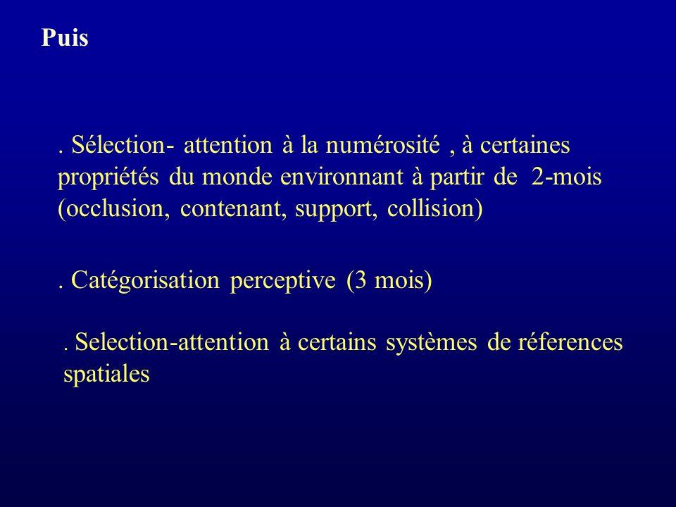 Sélection- attention à la numérosité, à certaines propriétés du monde environnant à partir de 2-mois (occlusion, contenant, support, collision).