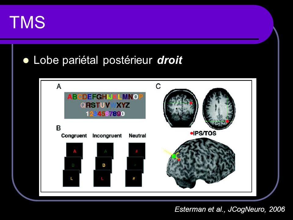 TMS Lobe pariétal postérieur droit Esterman et al., JCogNeuro, 2006