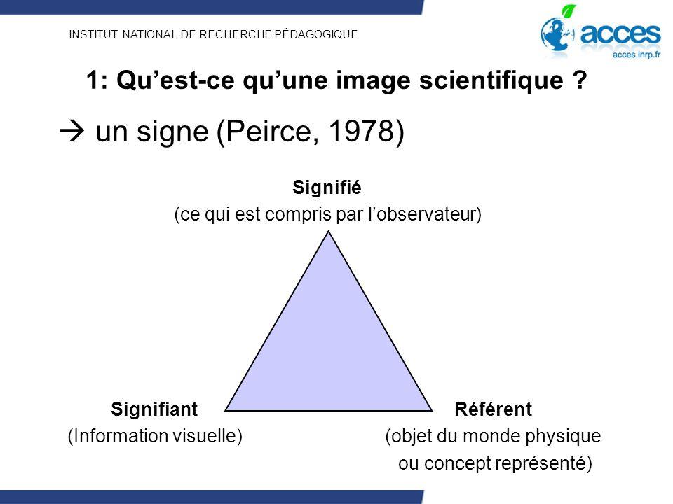 INSTITUT NATIONAL DE RECHERCHE PÉDAGOGIQUE 1: Quest-ce quune image scientifique ? un signe (Peirce, 1978) Référent (objet du monde physique ou concept