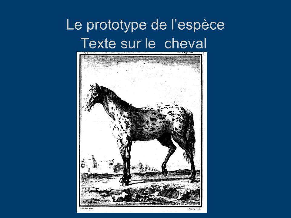Le prototype de lespèce Texte sur le cheval HN, Tome IV, 1753