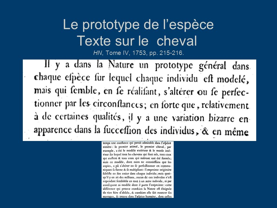 Le prototype de lespèce Texte sur le cheval HN, Tome IV, 1753, pp. 215-216.