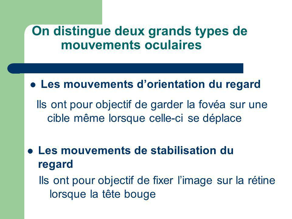 On distingue deux grands types de mouvements oculaires Les mouvements dorientation du regard Ils ont pour objectif de garder la fovéa sur une cible mê