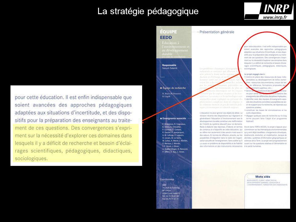La stratégie pédagogique