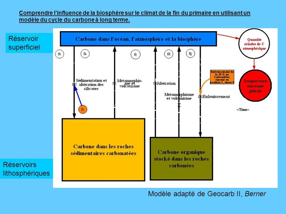 Comprendre linfluence de la biosphère sur le climat de la fin du primaire en utilisant un modèle du cycle du carbone à long terme. Modèle adapté de Ge