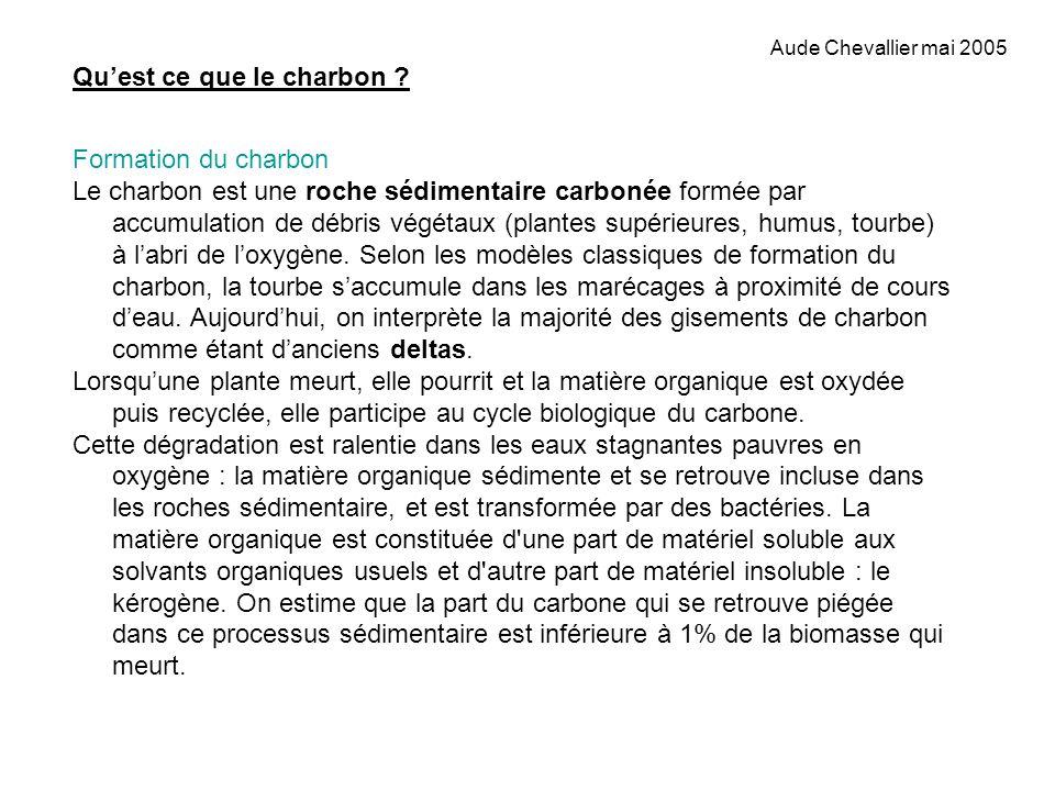 Aude Chevallier mai 2005 Les composés végétaux qui sont soumis à dégradation sont : la lignine, la cellulose, les tanins.