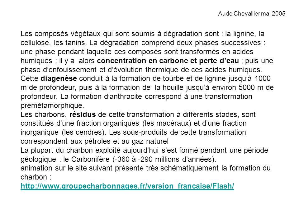 Aude Chevallier mai 2005 Les composés végétaux qui sont soumis à dégradation sont : la lignine, la cellulose, les tanins. La dégradation comprend deux