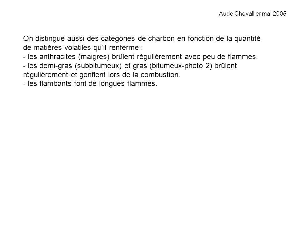 Aude Chevallier mai 2005 On distingue aussi des catégories de charbon en fonction de la quantité de matières volatiles quil renferme : - les anthracit