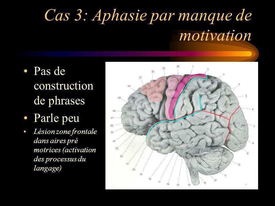 Cas 3: Aphasie par manque de motivation Pas de construction de phrases Parle peu Lésion zone frontale dans aires pré motrices (activation des processu