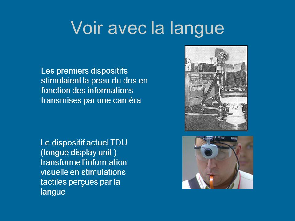 Voir avec la langue Les résultats expérimentaux font apparaître une représentation somatotopique de la langue dans le cortex visuel