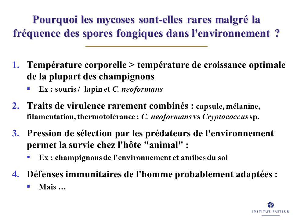 Pourquoi les mycoses sont-elles rares malgré la fréquence des spores fongiques dans l'environnement ? 1.Température corporelle > température de croiss
