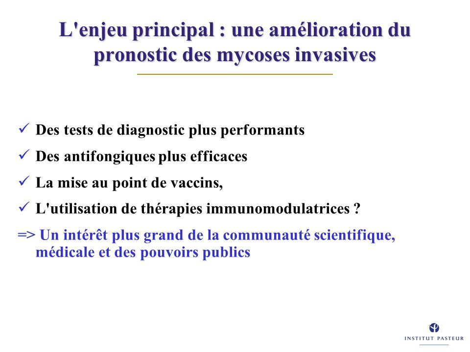 L'enjeu principal : une amélioration du pronostic des mycoses invasives Des tests de diagnostic plus performants Des antifongiques plus efficaces La m