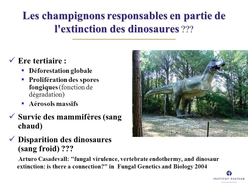 Les champignons responsables en partie de l'extinction des dinosaures Les champignons responsables en partie de l'extinction des dinosaures ??? Ere te