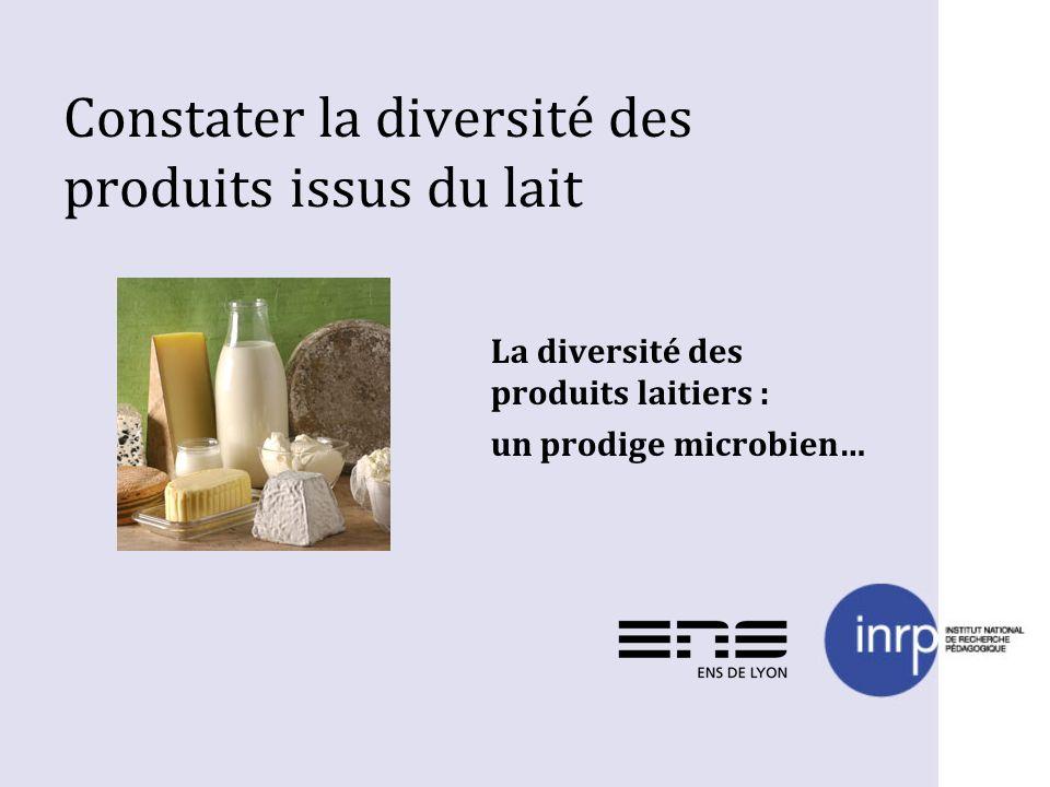 Constater la diversité des produits issus du lait La diversité des produits laitiers : un prodige microbien…