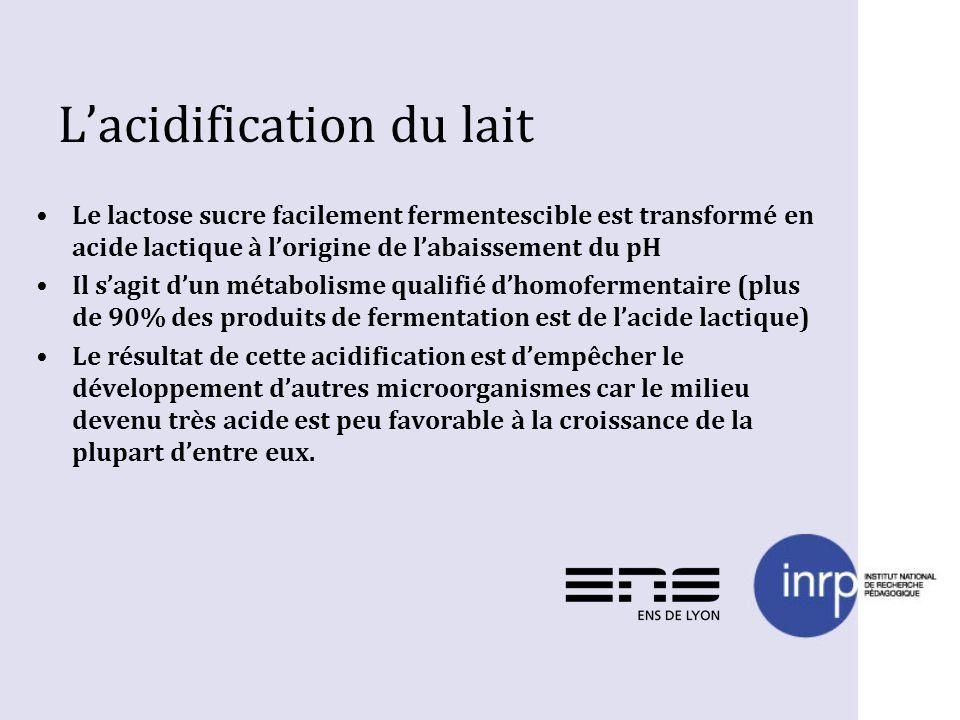 Lacidification du lait Le lactose sucre facilement fermentescible est transformé en acide lactique à lorigine de labaissement du pH Il sagit dun métab
