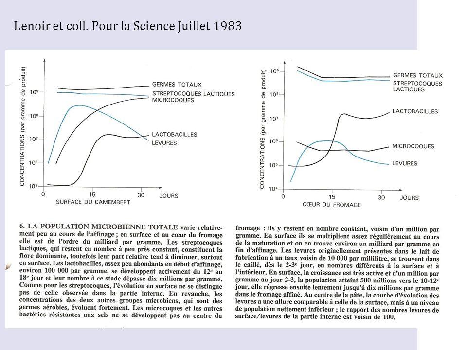 Lenoir et coll. Pour la Science Juillet 1983