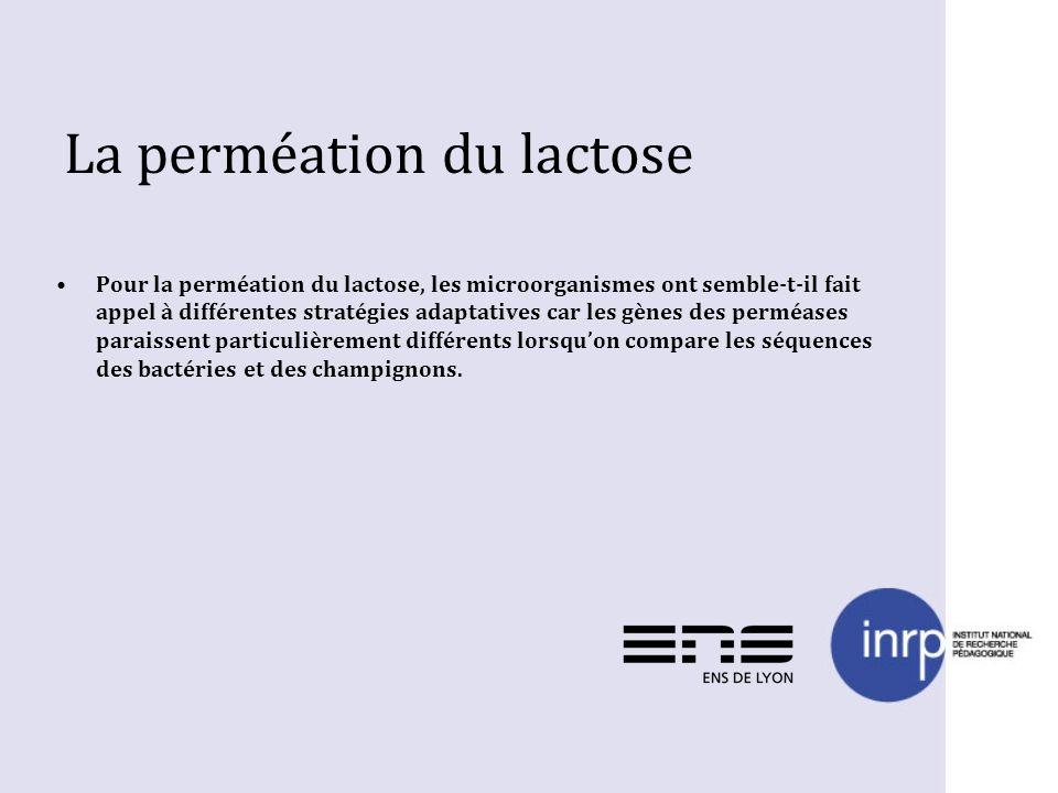 La perméation du lactose Pour la perméation du lactose, les microorganismes ont semble-t-il fait appel à différentes stratégies adaptatives car les gè
