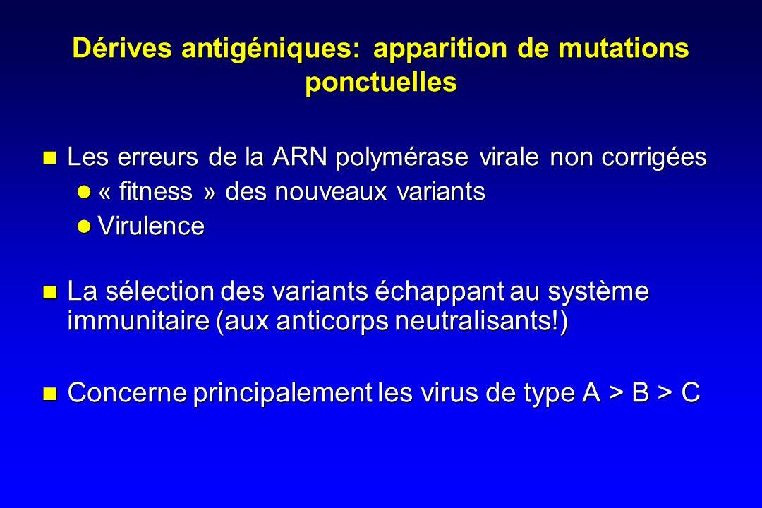 Dérives antigéniques: apparition de mutations ponctuelles Les erreurs de la ARN polymérase virale non corrigées « fitness » des nouveaux variants Virulence La sélection des variants échappant au système immunitaire (aux anticorps neutralisants!) Concerne principalement les virus de type A > B > C Les erreurs de la ARN polymérase virale non corrigées « fitness » des nouveaux variants Virulence La sélection des variants échappant au système immunitaire (aux anticorps neutralisants!) Concerne principalement les virus de type A > B > C