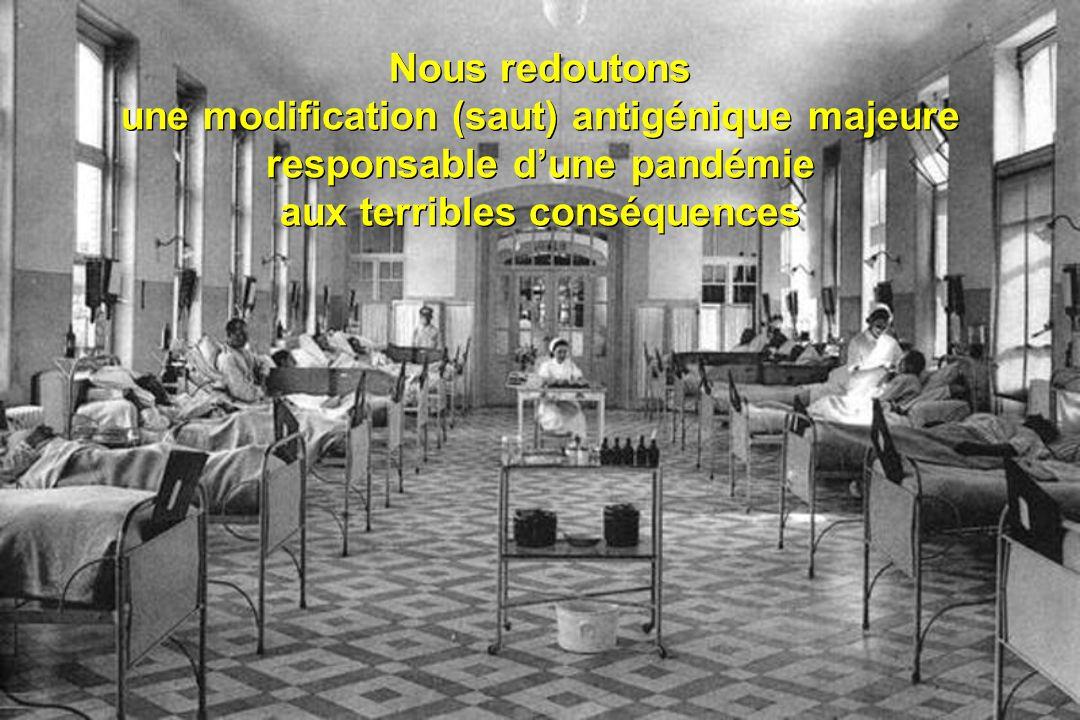 Les pandémies du XX ème siècle 1889 - 1890 forme neurologique A/H2N2 1900 - 1901 A/H3N8 1918 - 1919 «grippe espagnole» A/H1N1 1957 - 1958 «grippe asiatique» A/H2N2 1968 - 1970 «grippe de Hong Kong», A/H3N2 1977 - 1978 «grippe russe», A/H1N1 1889 - 1890 forme neurologique A/H2N2 1900 - 1901 A/H3N8 1918 - 1919 «grippe espagnole» A/H1N1 1957 - 1958 «grippe asiatique» A/H2N2 1968 - 1970 «grippe de Hong Kong», A/H3N2 1977 - 1978 «grippe russe», A/H1N1