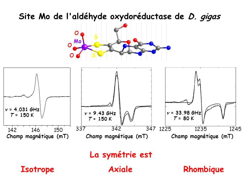 Site Mo de l'aldéhyde oxydoréductase de D. gigas 337347342 = 9.43 GHz T = 150 K 122512451235 = 33.98 GHz T = 80 K Champ magnétique (mT) AxialeRhombiqu