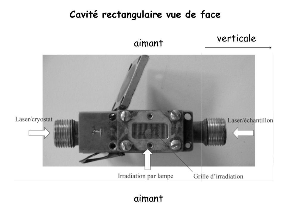 Cavité rectangulaire vue de face aimant verticale