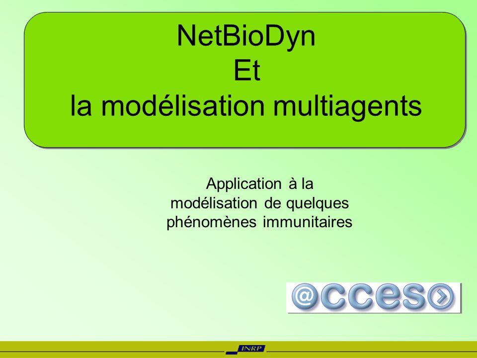 NetBioDyn Et la modélisation multiagents Application à la modélisation de quelques phénomènes immunitaires