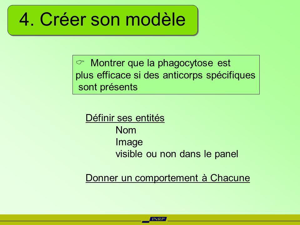 4. Créer son modèle Définir ses entités Nom Image visible ou non dans le panel Donner un comportement à Chacune Montrer que la phagocytose est plus ef