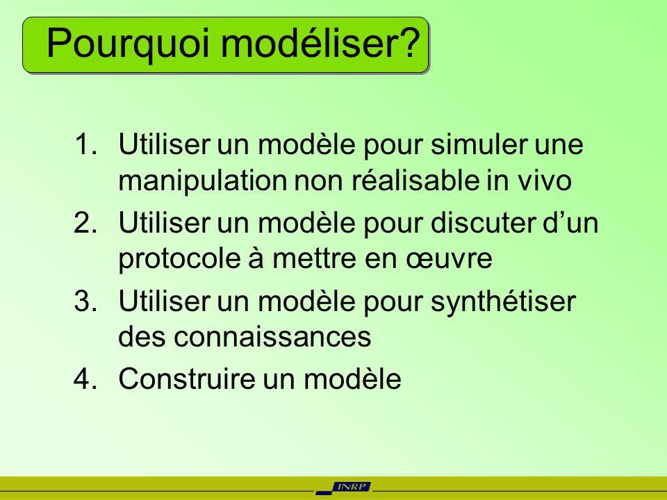 Pourquoi modéliser? 1.Utiliser un modèle pour simuler une manipulation non réalisable in vivo 2.Utiliser un modèle pour discuter dun protocole à mettr