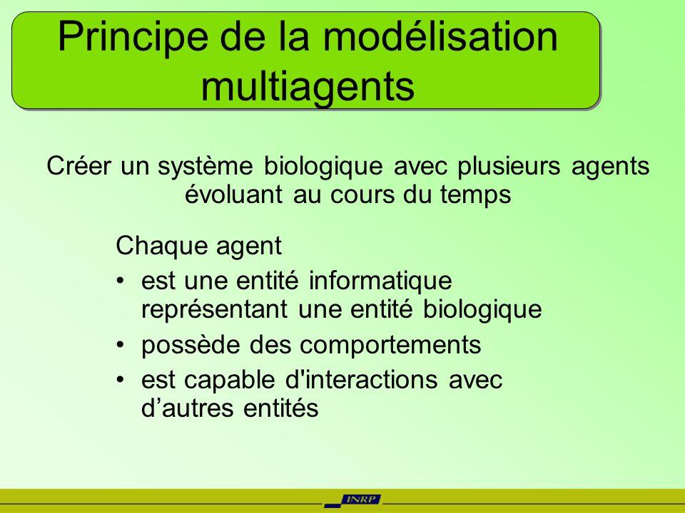 Principe de la modélisation multiagents Chaque agent est une entité informatique représentant une entité biologique possède des comportements est capa
