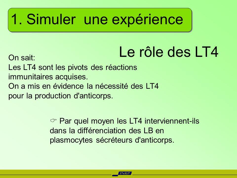 1. Simuler une expérience On sait: Les LT4 sont les pivots des réactions immunitaires acquises. On a mis en évidence la nécessité des LT4 pour la prod