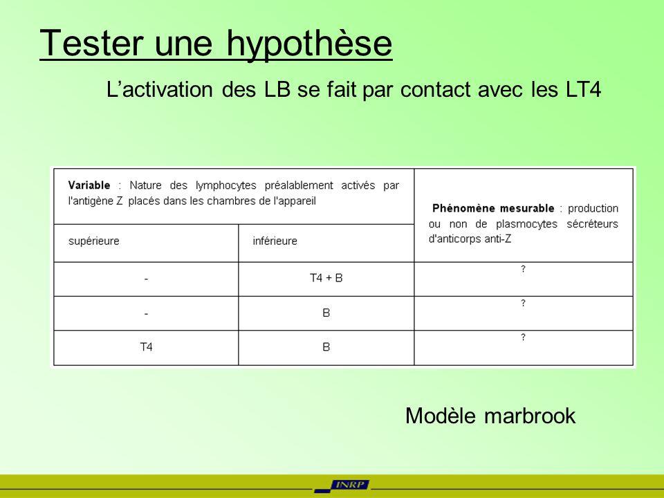 Tester une hypothèse Lactivation des LB se fait par contact avec les LT4 Modèle marbrook