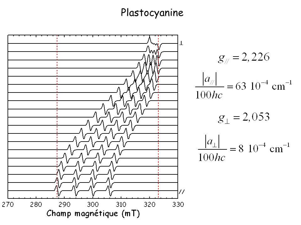 Plastocyanine