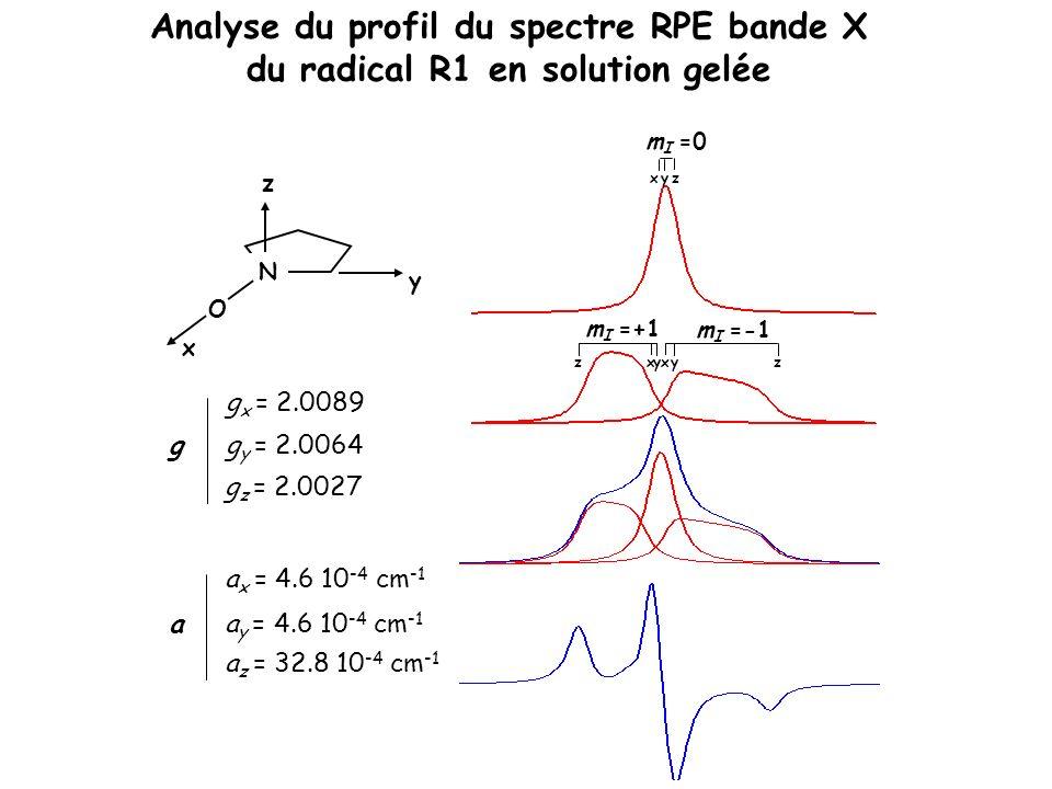 Analyse du profil du spectre RPE bande X du radical R1 en solution gelée N O x y z g g x = 2.0089 g y = 2.0064 g z = 2.0027 a a x = 4.6 10 -4 cm -1 a