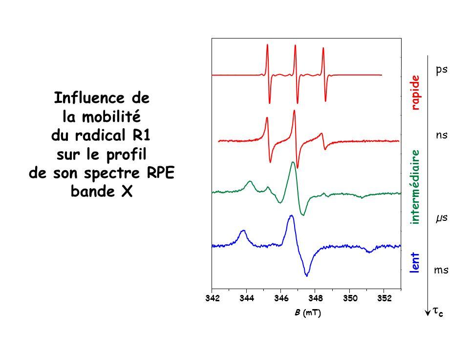 Influence de la mobilité du radical R1 sur le profil de son spectre RPE bande X 342344346348350352 rapide c intermédiaire lent ns ps µs B (mT) ms