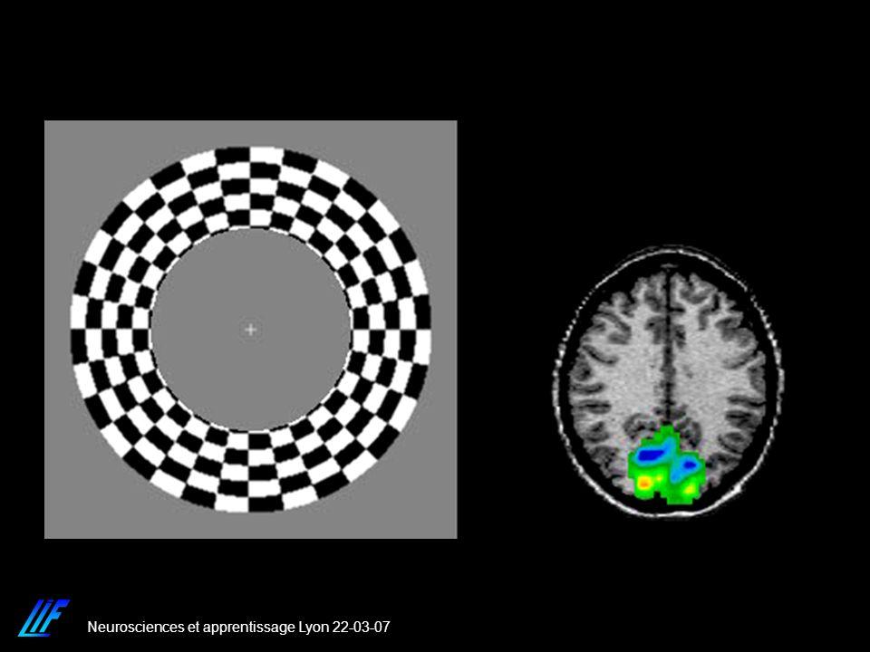 Neurosciences et apprentissage Lyon 22-03-07