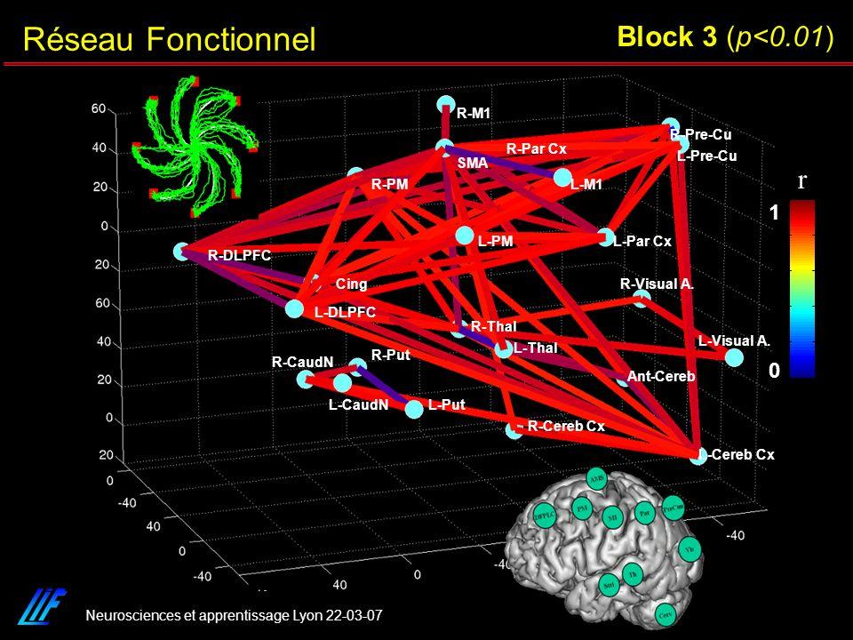 Neurosciences et apprentissage Lyon 22-03-07 r 0 1 R-Cereb Cx L-Cereb Cx Ant-Cereb L-Visual A. R-Visual A. R-Pre-Cu L-Pre-Cu L-Par Cx R-Par Cx R-M1 L-
