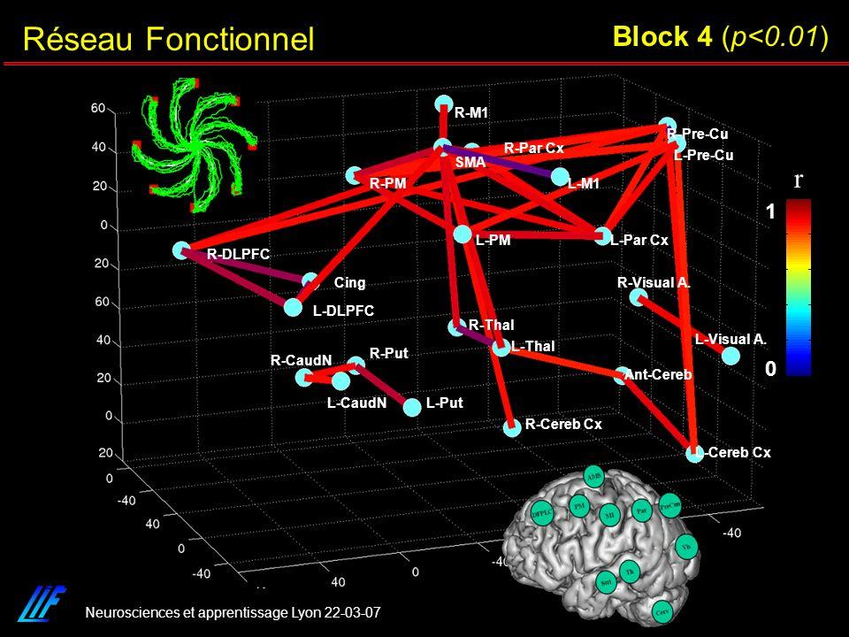 Neurosciences et apprentissage Lyon 22-03-07 R-Cereb Cx L-Cereb Cx Ant-Cereb L-Visual A. R-Visual A. R-Pre-Cu L-Pre-Cu L-Par Cx R-Par Cx R-M1 L-M1 SMA