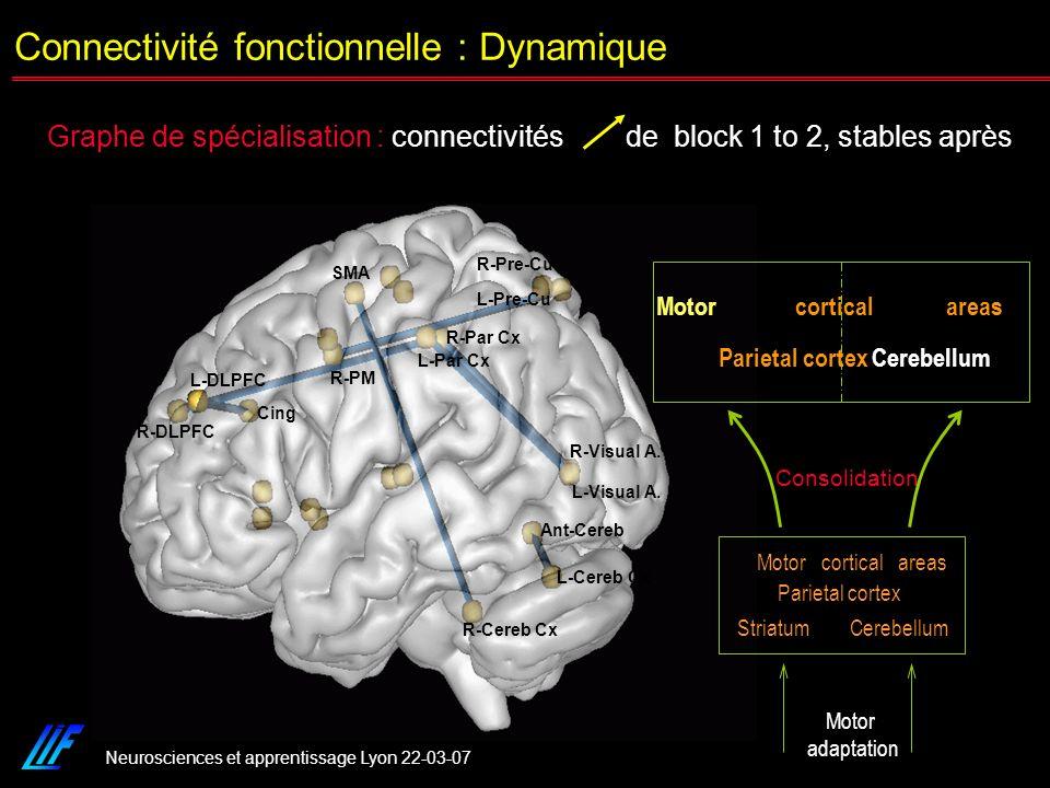 Neurosciences et apprentissage Lyon 22-03-07 L-Cereb Cx R-Cereb Cx Ant-Cereb SMA L-Visual A. R-Visual A. R-DLPFC L-DLPFC Cing R-PM L-Pre-Cu R-Pre-Cu L