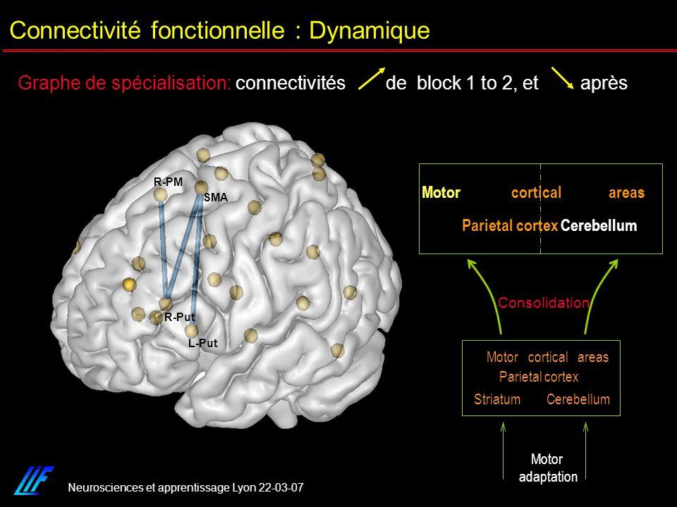 Neurosciences et apprentissage Lyon 22-03-07 Graphe de spécialisation: connectivités de block 1 to 2, et après SMA R-PM L-Put R-Put Consolidation Moto